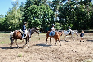 Kind-Ouder Paardenweekend
